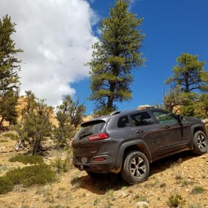 Trailhawk climbing near Red Canyon